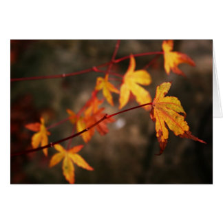 Weeping Autumn Note Card