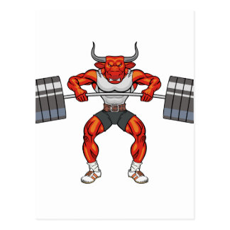 weight lifting bull 2 postcard