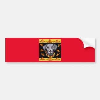 Weimarana Cinco de Mayo Bumper Sticker