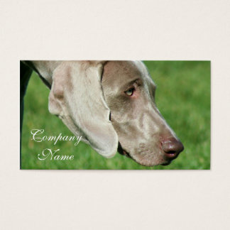 Weimaraner Business Cards