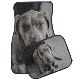 Weimaraner Dog Breed Lover Floor Mat