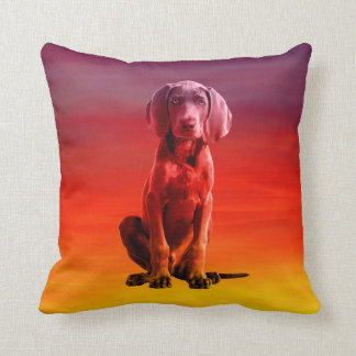 Weimaraner Dog Sitting On Beach Cushion