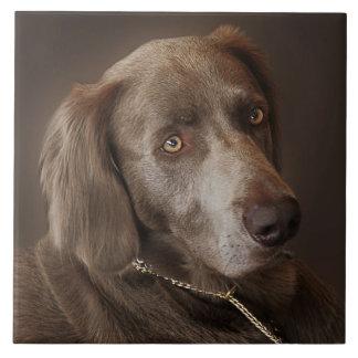Weimaraner Hunting Dog Ceramic Tile