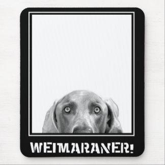 Weimaraner Nation : Weimaraner In A Box! Mouse Pad