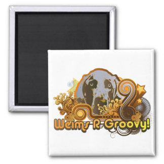 Weimaraner Nation : Weims 'R' Groovy! Square Magnet