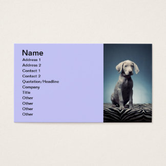 Weimaraner puppy business card