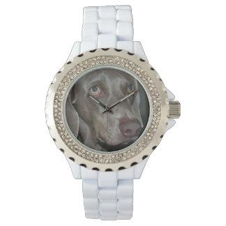 Weimaraner Watch