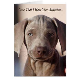 "Weimaraner ""You Are The Best"" Greeting Card"