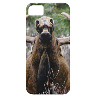 weird bull moose iPhone 5 cover