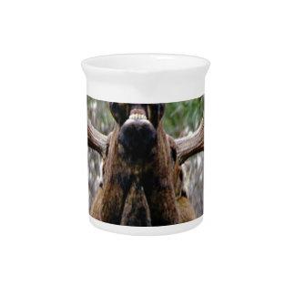weird bull moose pitcher