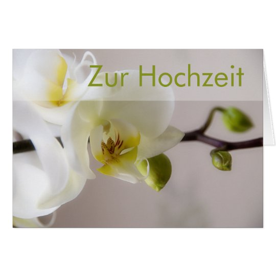 Weisse Orchidee • Glueckwunschkarte Hochzeit Card