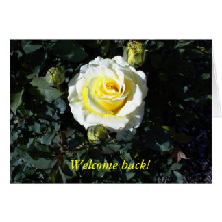 Welcome Back Card with Yellow Roses