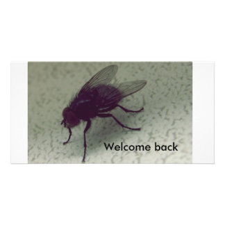 Welcome back personalised photo card