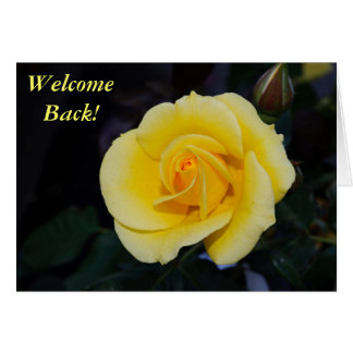 Welcome Back Yellow Rose Card