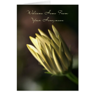 Welcome Home From Your Honeymoon - Flower Bud Greeting Card