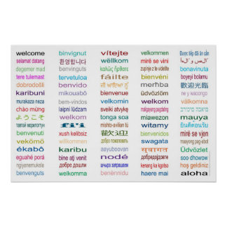 Welcome in 80 Languages Poster