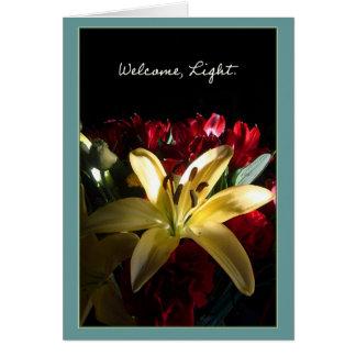 Welcome, Light Card