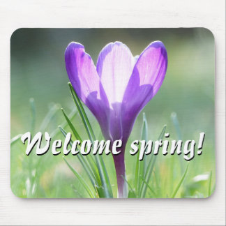 Welcome spring! Purple Crocus in spring 02.2.T Mouse Pad