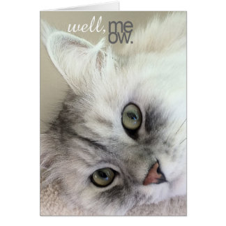 Well, Meow There Multi-Occasion Card