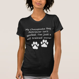 Well Trained Chesapeake Bay Retriever Owner T-Shirt