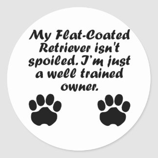 Well Trained Flat-Coated Retriever Owner Classic Round Sticker