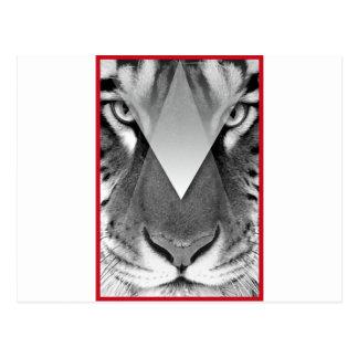 Wellcoda Amazing Tiger Cat Face Wild Life Postcard