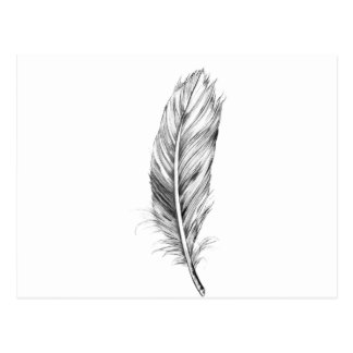 Wellcoda Bird Of A Feather Life Dream Fun Postcard
