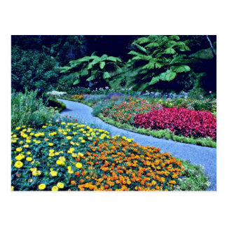 Wellington Botanical Gardens Postcard