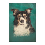 Welsh border collie gallery wrapped canvas
