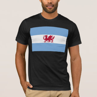 Welsh Colony In Patagonia, Argentina flag T-Shirt