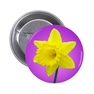 Welsh Daffodil - III - Round Buttons