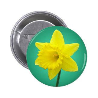 Welsh Daffodil - IV 6 Cm Round Badge