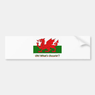 welsh dragon bumper sticker