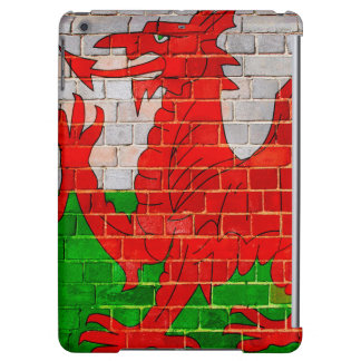 Welsh dragon on a brick wall iPad air case