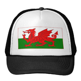 Welsh flag designs cap