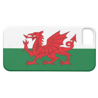 Welsh Flag Phone Case