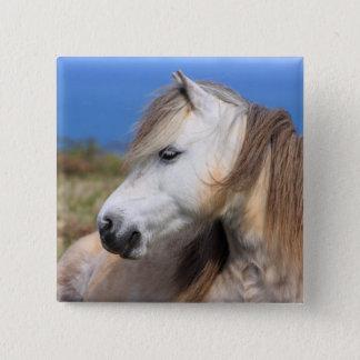 Welsh Pony 15 Cm Square Badge
