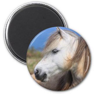 Welsh Pony 6 Cm Round Magnet