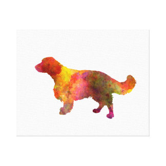 Welsh Springer Spaniel in watercolor Canvas Print