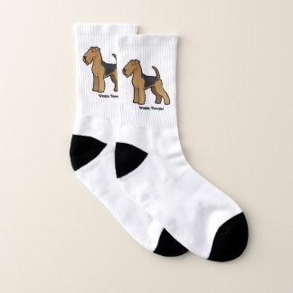 Welsh Terrier 1