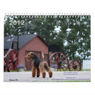 Welsh Terrier 2012 Calendar by Darwyn