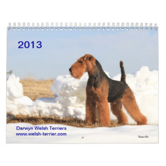 Welsh Terrier 2013 Calendar by Darwyn