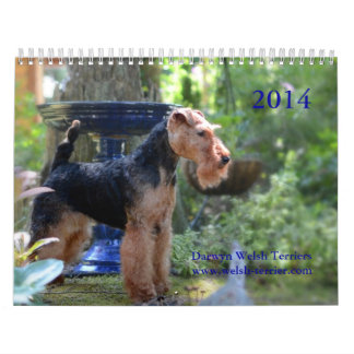Welsh Terrier 2014 Calendar by Darwyn