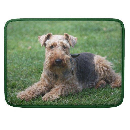Welsh Terrier dog beautiful macbook air sleeve Sleeve For MacBook Pro