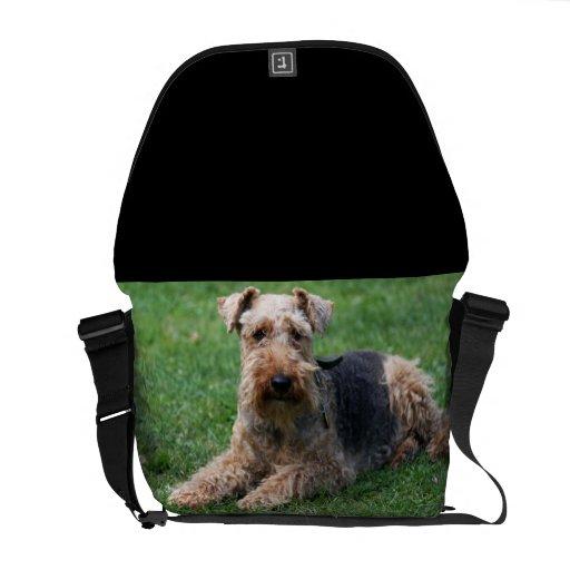 Welsh Terrier dog beautiful photo messenger bag