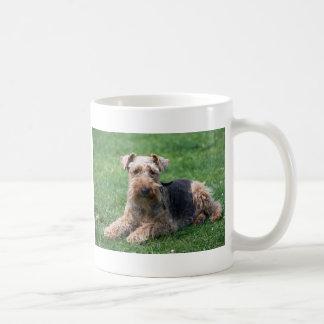 Welsh terrier dog photo coffee or tea mug