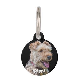 Welsh Terrier Dog Tag Pet ID Tags