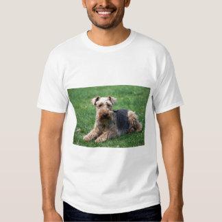 Welsh terrier dog unisex  t-shirt, gift idea shirts