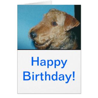 Welsh Terrier Greeting Card