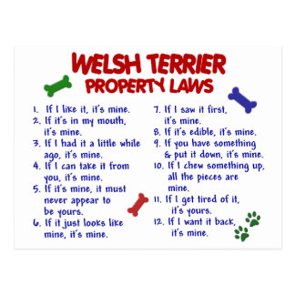 WELSH TERRIER Property Laws 2 Postcard